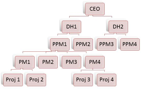 Project Organization Hierarchy