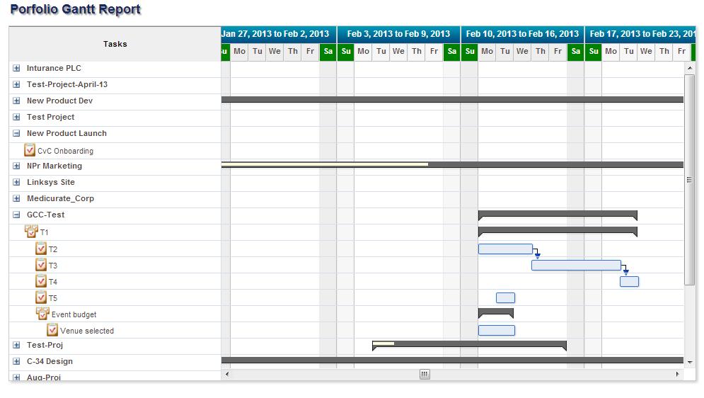Project Portfolio Gantt Chart