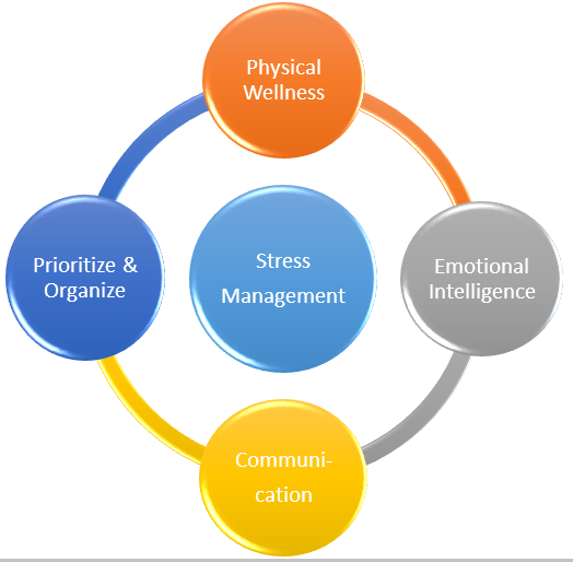 Types of Stress Project Manager Faces and Stress Management For Project Managers
