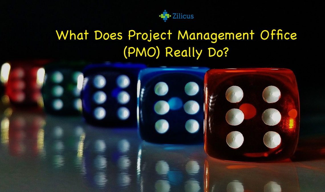 What Does Project Management Office PMO Really Do