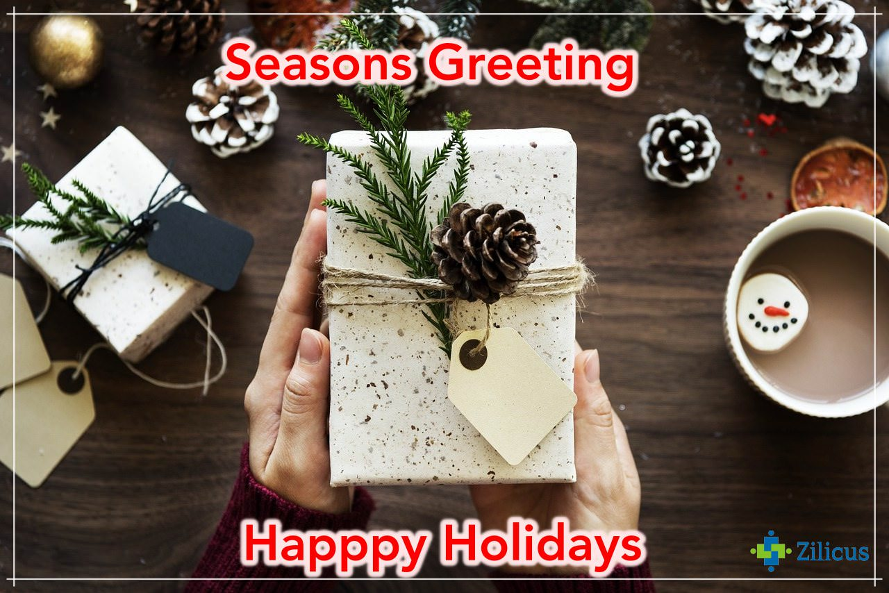 Seasons Greeting | Happy Holidays from Zilicus