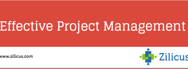 Effective Project Management - Infographics